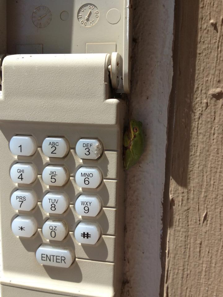 Spokane garage door keypad panel